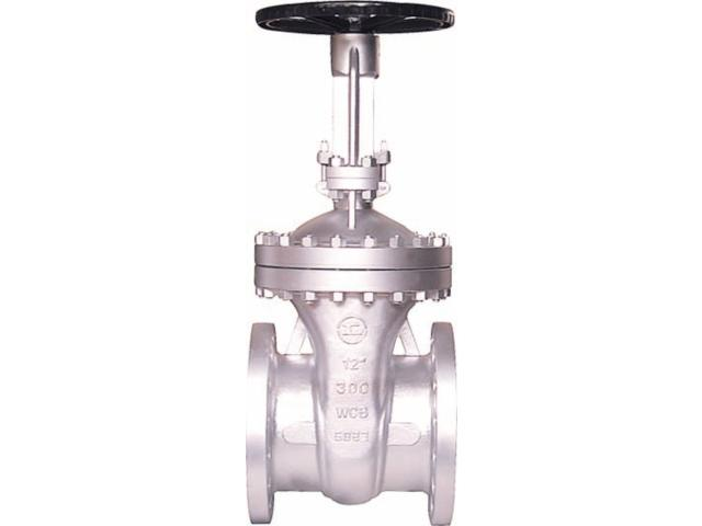 Cast Steal Flexible Wedge Gate Valve